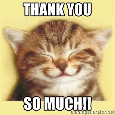 Thank You Cat Meme - thank you so much very happy cat meme generator