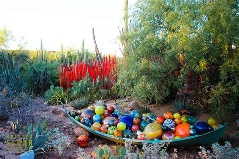 Dale Chihuly Exhibit At The Desert Botanical Gardens Desert Botanical Garden Chihuly