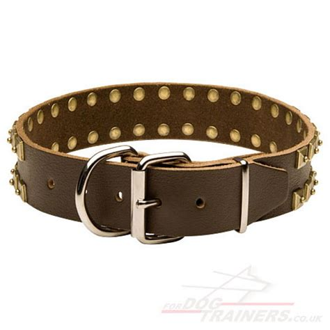 collar for dogs collars for large dogs rottweiler collars uk