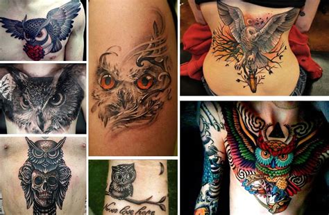 wisdom tattoo 20 staggering owl tattoos representing mystery and wisdom