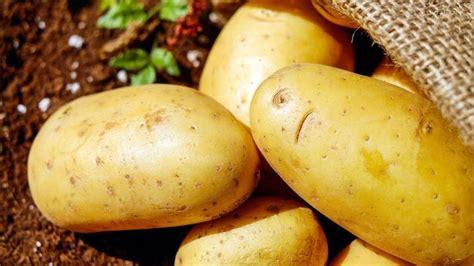camilan kentang punya  penggemar  indonesia