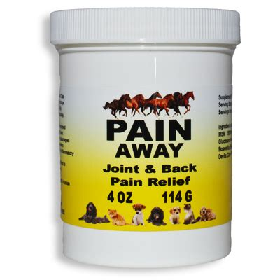Ease Those Aches Away With A by Cat Health Tips Nutrition Pets Away To Help