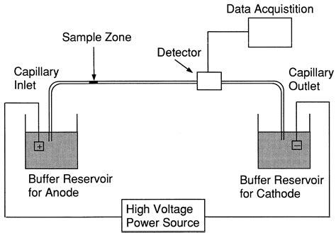 diagram of electrophoresis file capillary gel electrophoresis instrument schematic