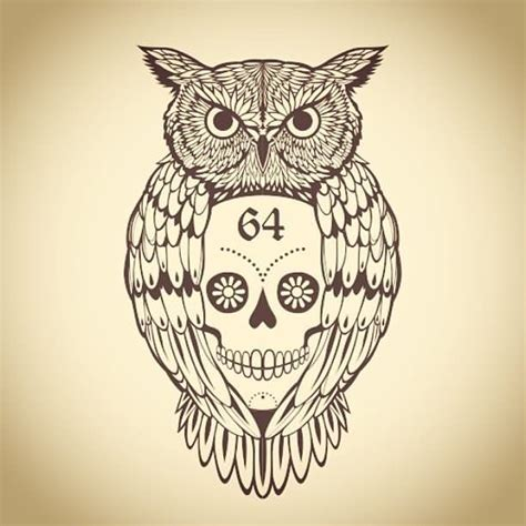 owl outline tattoo designs 25 best ideas about sugar skull owl on