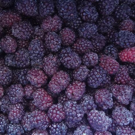 Iqf Frozen Raspberry 1kg iqf frozen blackberries frozen blackberry manufacturer supplier