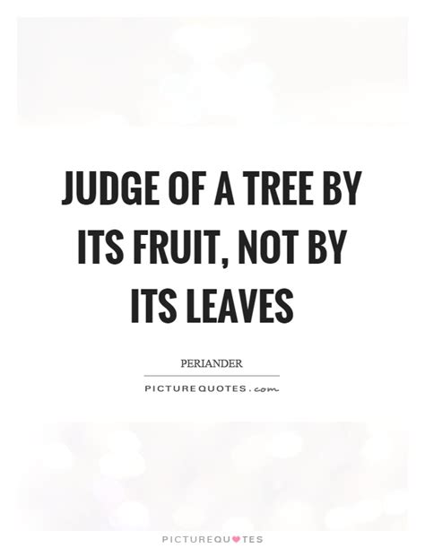 judge a tree by its fruit judge of a tree by its fruit not by its leaves picture