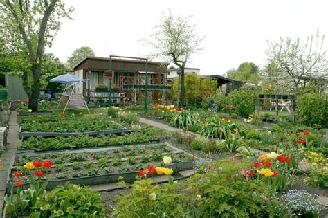 Great Small Kitchen Ideas by A Beginner S Guide To Urban Gardening And Farming In Pgh