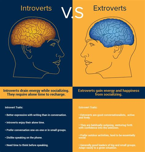 introverts vs extroverts infographic psyche