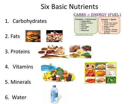 carbohydrates nutrients what are the 6 nutrients in food food ideas