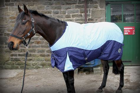 Turn Out Rugs by 600d Winter Turnout Rug With Detachable Neck