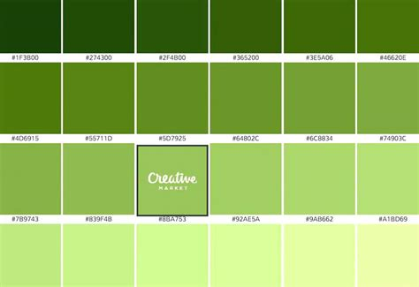 different color greens different shades of green shades of green color different