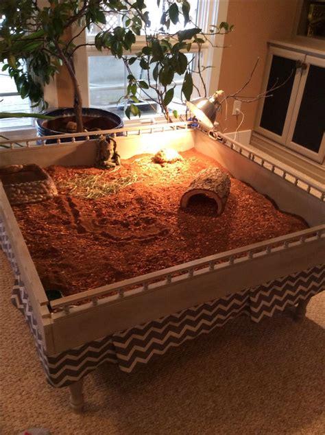 franklin s new tortoise habitat for