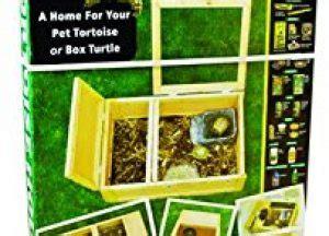 zoo med tortoise house how to set up a tortoise table easy setup guide vivarium world