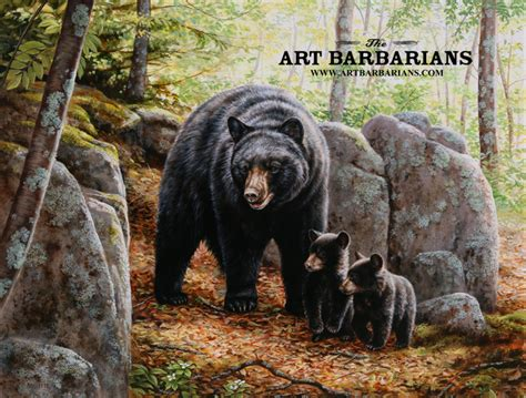 wildlife art prints  original paintings   wide