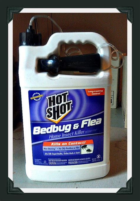 bed bug cream hot shot bed bug spray review simple products and hot shots