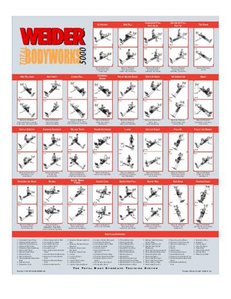 Banc De Musculation Weider 8950 by 7 Best Images Of Weider 6900 Exercise Chart Weider Pro