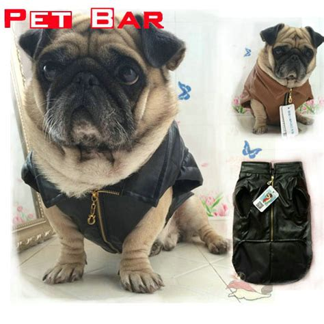 winter jackets for pugs pet bar jacket fashion pu leather designer pug clothes waterproof small pets