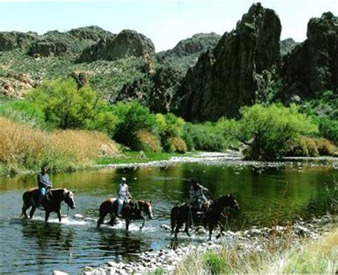 saguaro lake ranch stable mesa az hours address nature wildlife  reviews tripadvisor