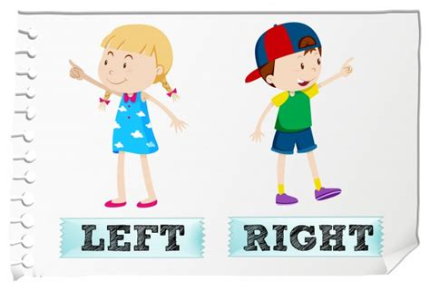 st on left or right opposite adjectives left and right vector free download