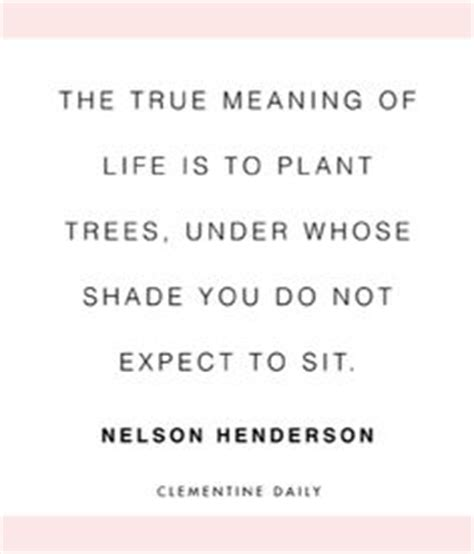 biography true meaning 60 best tree quotes sayings