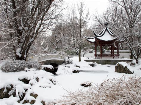 china garden winter wordless wednesday things i am grateful for