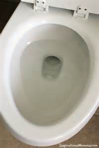 Pictures Of Toilet Bowls 25 Best Images About Home Hacks On Wood