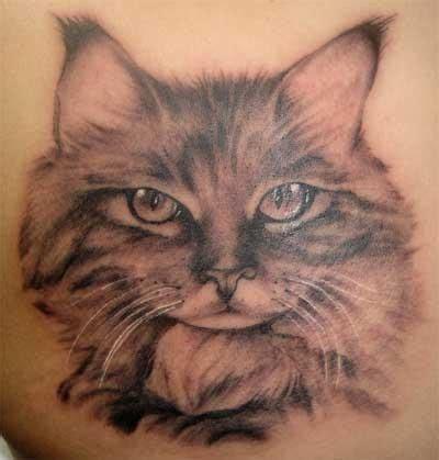 cat tattoo designs gallery cat tattoo designs tattoo ideas pictures tattoo ideas