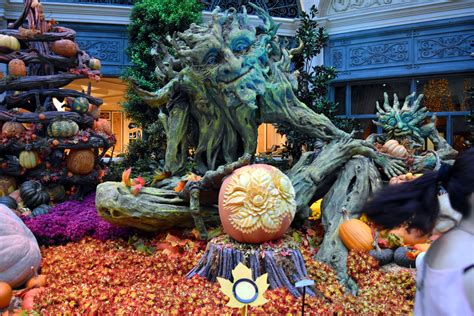 botanical gardens in las vegas bellagio fall 2015 botanical gardens las vegas cvetybaby