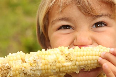 ate corn cob orange corn jam packed with vitamin a fights childhood blindness earth eats