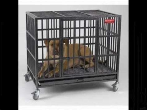 indestructible kennel indestructible crate large crates in all sizes available