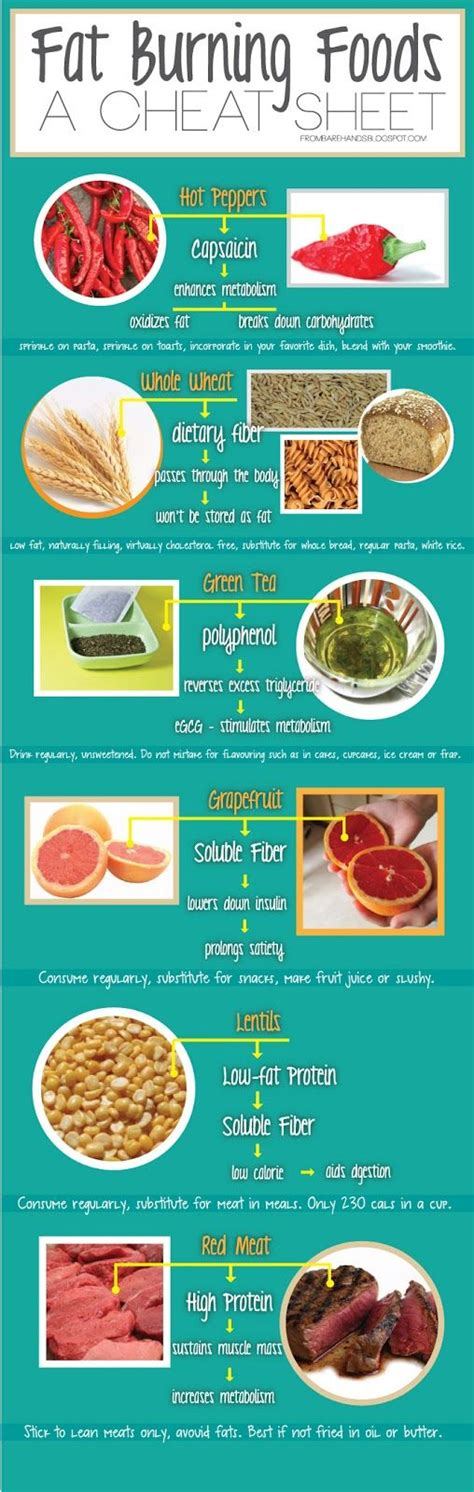 Burning Detox Diet Plan by 56 Best Images About Cleanse Burning Foods On