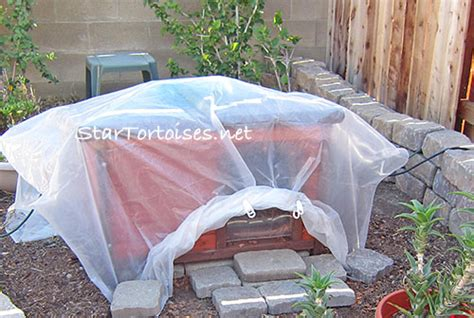 Outdoor Heat Ls For Tortoise by Outdoor Hides Heated Houses For Tortoises