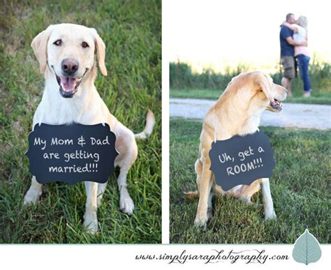 engagement photos with dogs best 25 engagement photos ideas on engagement pictures