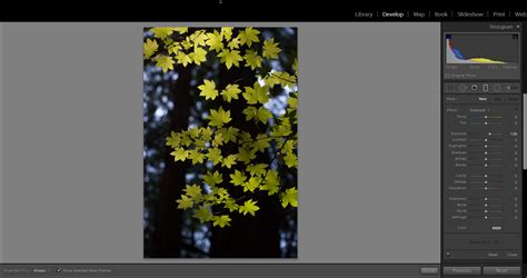 tutorial photoshop lightroom 5 indonesia tutorial adobe lightroom 5 pdf bahasa indonesia