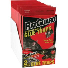 carpenter ant dust pack rat rodent control  chemical  kill spiders