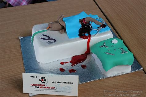 Eat In Kitchen Decorating Ideas four paws and whiskers veterinary inspired cakes