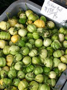 exotic herbs and plants in mao naga cuisine part ii