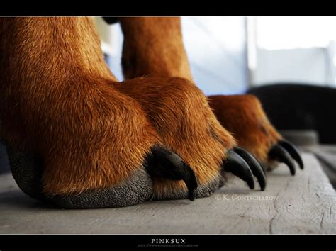 puppy toes by pinksux on deviantart