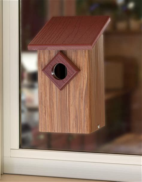 window view bird house songbird owl woodpecker bird houses roosting boxes nesting shelves