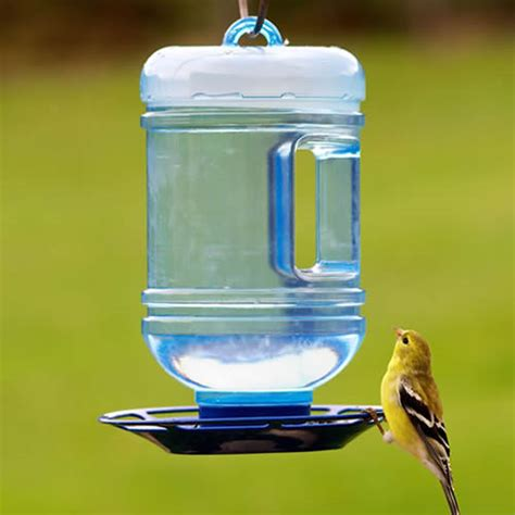 water cooler for birds with a roof duncraft pet 174 water cooler bird waterer