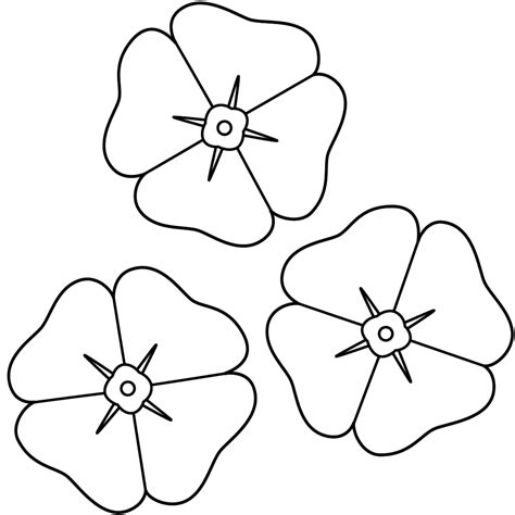 coloring page of a poppy flower coloring page remembrance day pinterest kindergarten
