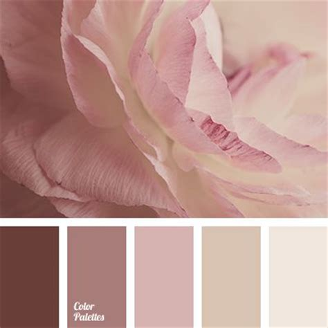 pink and brown color scheme 25 best ideas about pink color schemes on pinterest