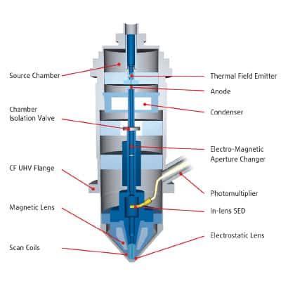 scanning electron microscope diagram scanning free