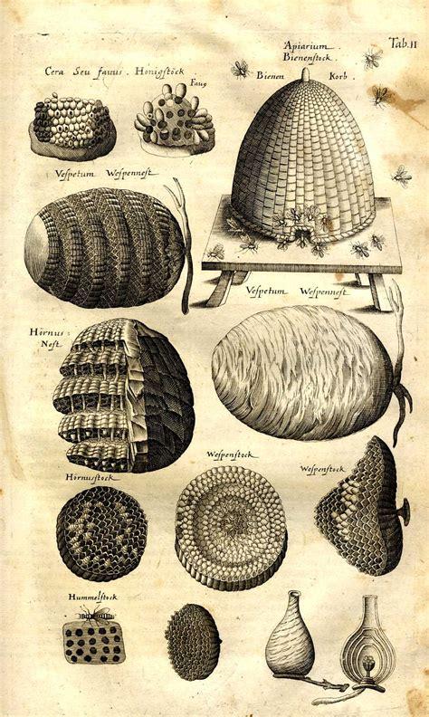 encyclopedie universelle de la langue abeille