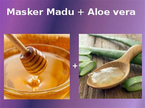 Aloe Vera Gel Untuk Masker Wajah masker madu untuk jerawat fakta khasiat cara membuatnya