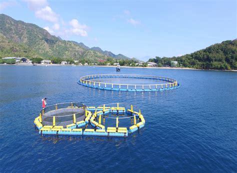 Jual Keramba Ikan aquatec keramba jaring apung dermaga apung dan perahu hdpe