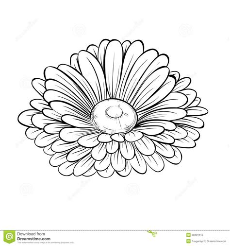 Outline Sketches Of Flowers by Realistic Flower Outlines Search Arm Flower Outline And