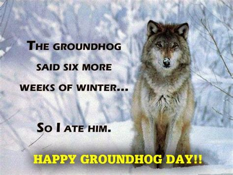 groundhog day happy day happy groundhog day images wishes and pictures