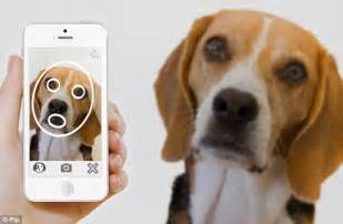 new technology for dogs pip app uses facial recognition technology to re unite