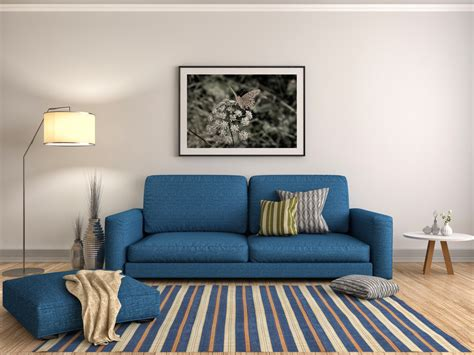 blue sofa in living room which couch best suits your personality